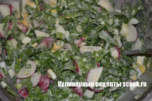 Салат с редисом, яйцом и зеленью