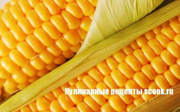 Сладкая кукуруза - нежный и полезный овощ
